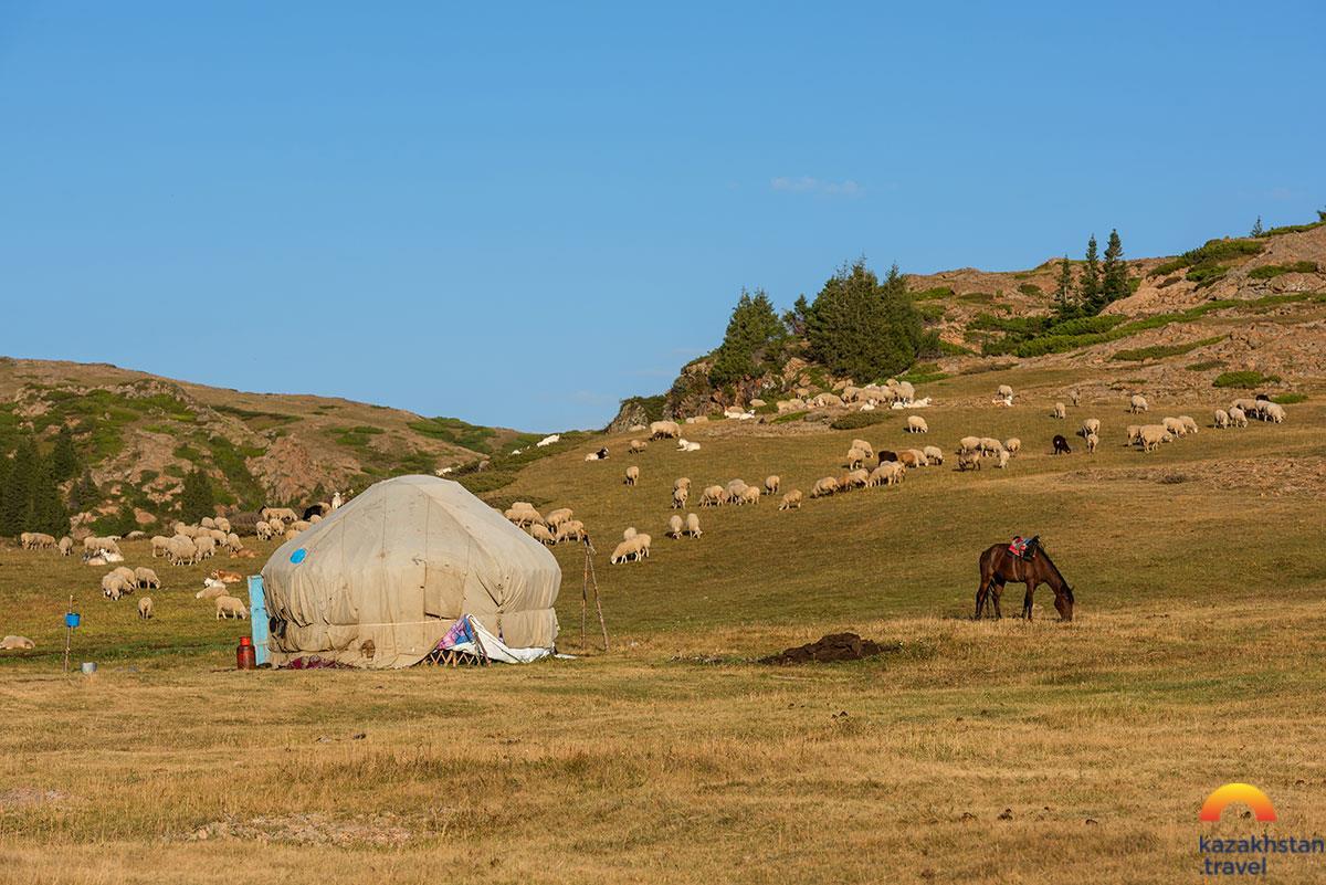 Погружение в казахскую культуру